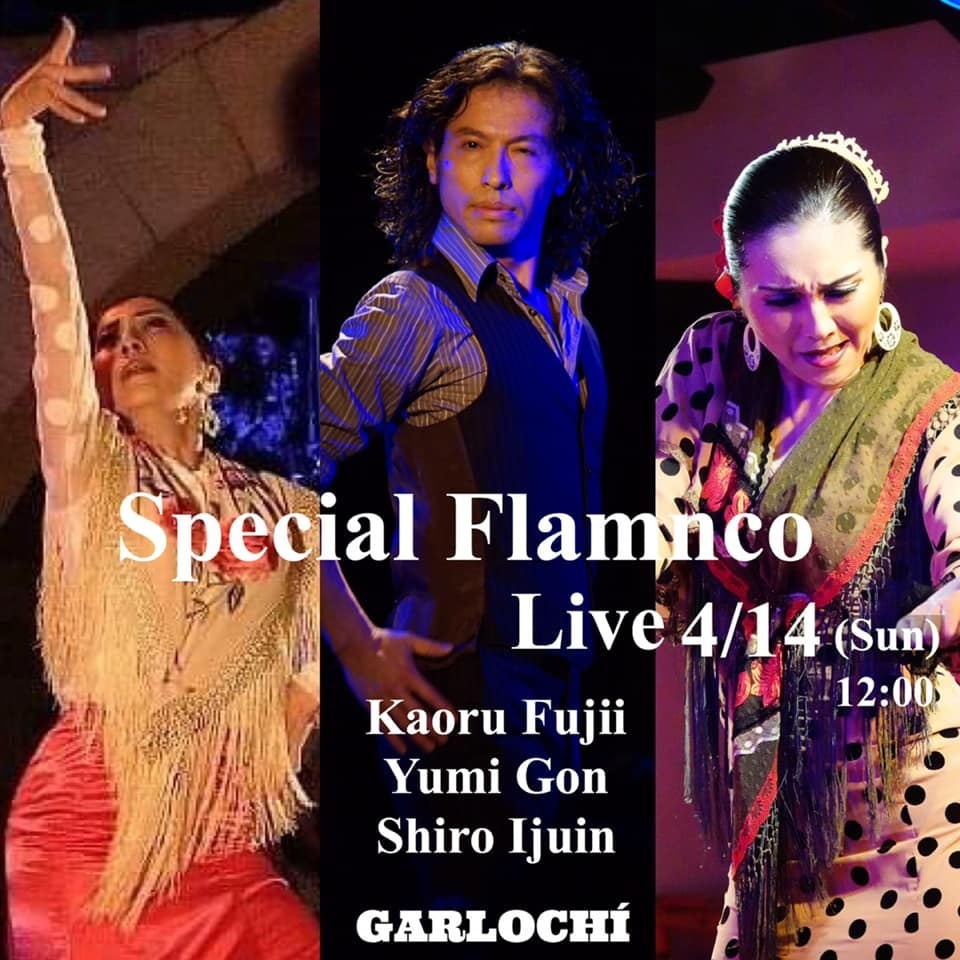 ガルロチ企画 Special Flamenco Live 藤井かおる×権弓美×伊集院史朗
