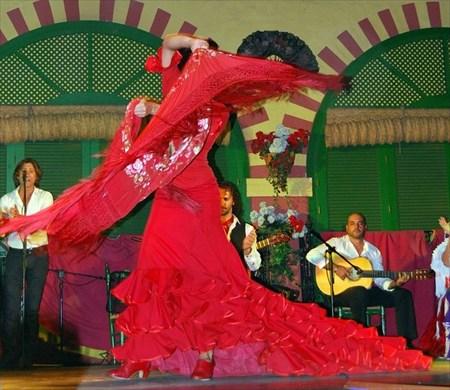 フラメンコの起源や歴史を感じさせる本場のフラメンコショーを楽しもう